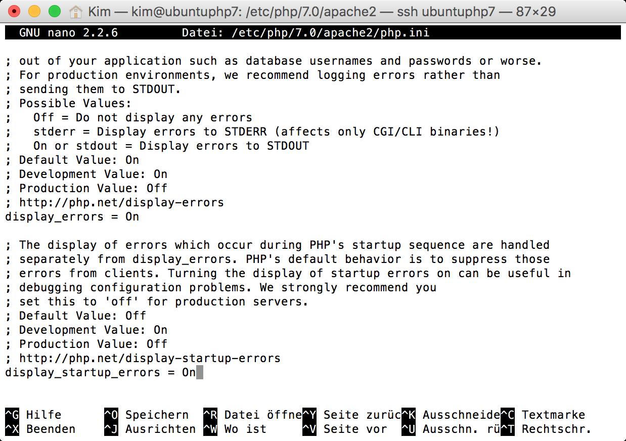 display_errors und display_startup_errors in der php.ini