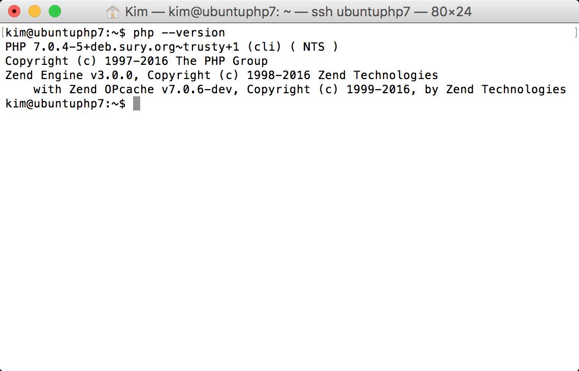 PHP Version anzeigen