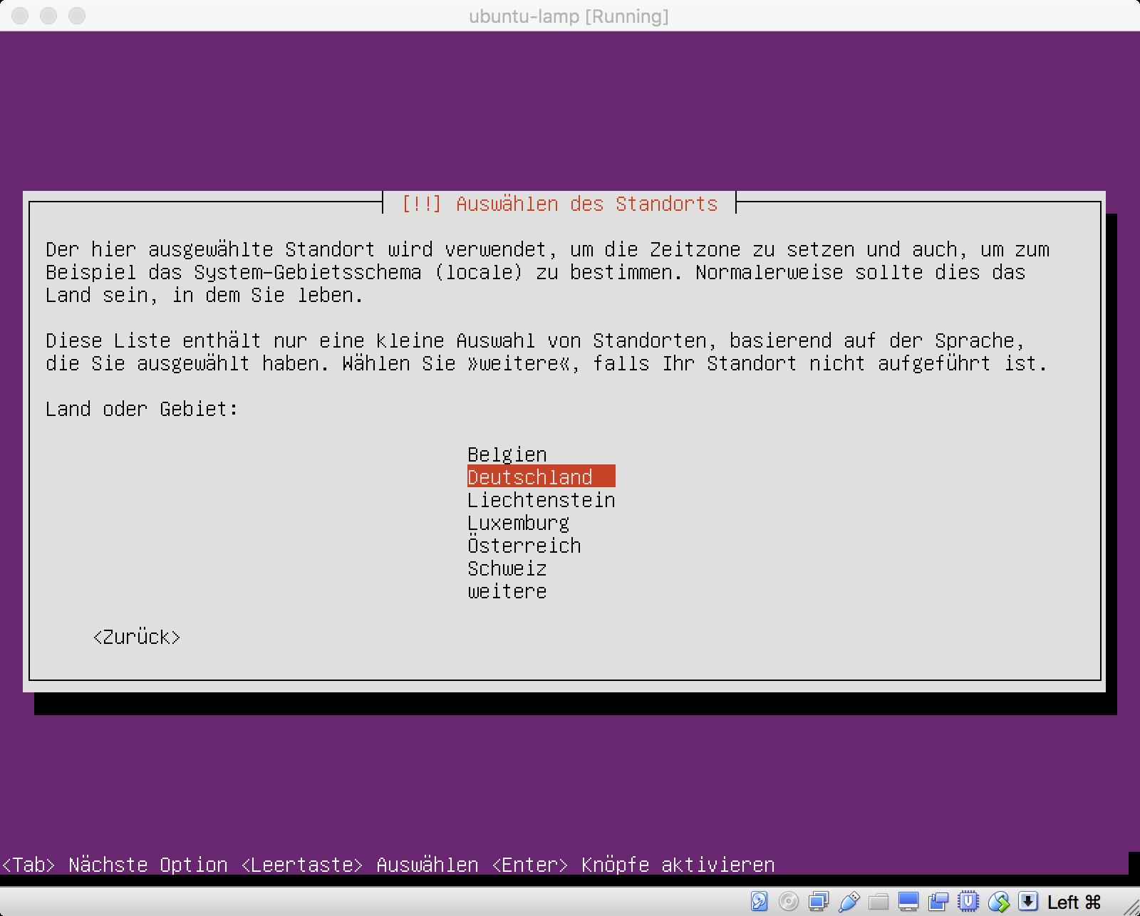 Ubuntu Installation - Wahl des Standortes